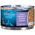 Pro Plan Focus Canned Kitten Food at PETCO