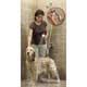 Rinse Ace 3-Way Pet Shower Sprayer