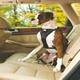 Kurgo Black Tru Fit Dual Walking Harness & Seat Belt Harness
